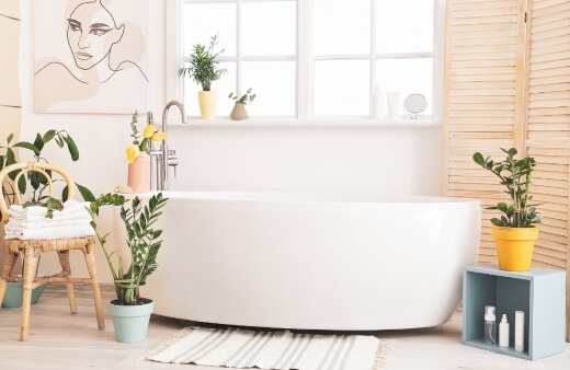 10 Best Bathroom Plants in Australia