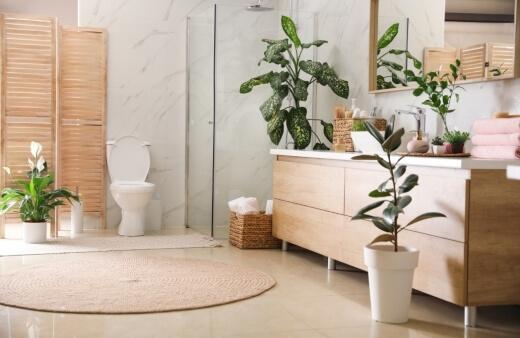 What Makes a Good Bathroom Plant